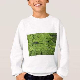 緑豊かな緑植物の茶畑の収穫 スウェットシャツ