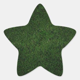 緑豊かな草の芝生 星シール