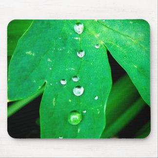 緑豊かな葉のマウスパッド マウスパッド