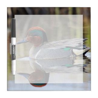 緑飛んだティール(緑がかった色) ホワイトボード