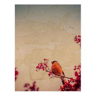 織られるナナカマドのBullfinch ポストカード