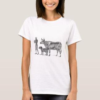 羊飼い-骨組ウシおよびヤギ Tシャツ