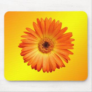 美しいオレンジおよび黄色のガーベラのデイジー マウスパッド
