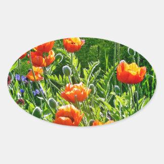 美しいオレンジケシの花のプリント 楕円形シール