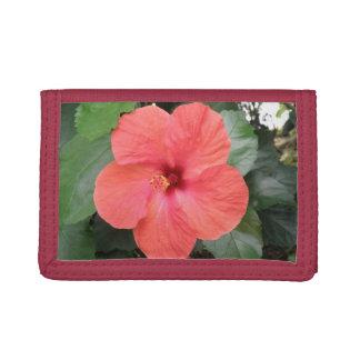 美しいオレンジハイビスカスの花の財布