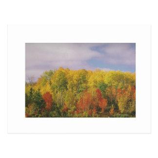 美しいカナダの秋季: 低価格のギフト はがき