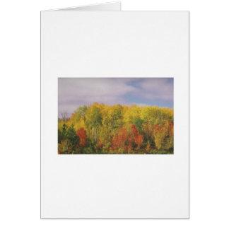 美しいカナダの秋季: 低価格のギフト グリーティングカード
