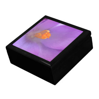 美しいクロッカスのギフト用の箱 ギフトボックス