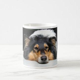 美しいコリー犬鼻三色のマグ、ギフト コーヒーマグカップ