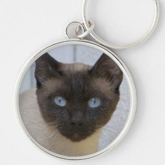 美しいシールポイントシャム猫 キーホルダー