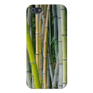 美しいタケ果樹園 iPhone 5 CASE