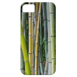 美しいタケ果樹園 iPhone SE/5/5s ケース