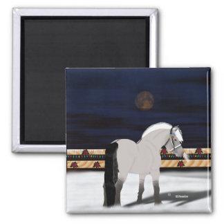 美しいノルウェーのフィヨルドの馬 マグネット