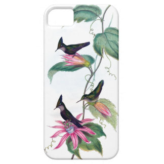美しいハチドリのiPhone 5の場合 iPhone SE/5/5s ケース