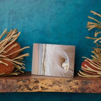 美しいビーチ の肋骨Blanca、スペイン フォトプラーク