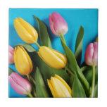 美しいピンクおよび黄色い春のチューリップ タイル