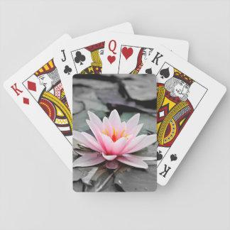 美しいピンクのはすの花の《植物》スイレンの禅の芸術 トランプ