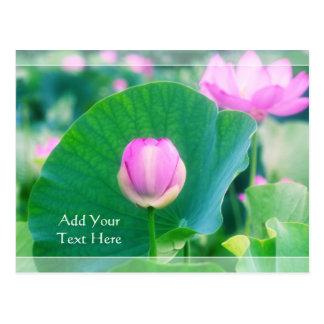 美しいピンクのはす芽の花の緑の葉の花 ポストカード