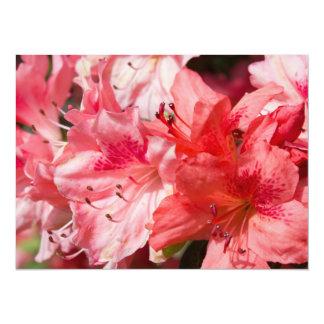 美しいピンクのツツジ カード