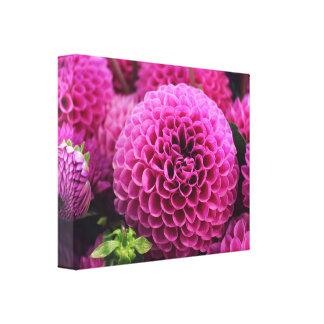美しいピンクの花 キャンバスプリント