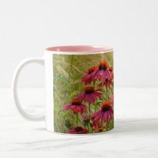 美しいピンクのechinaceaによってはコーヒー・マグが開花します ツートーンマグカップ