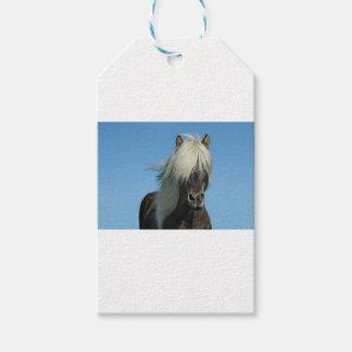 美しいフィヨルドの子馬の馬の種馬 ギフトタグ