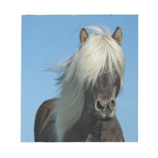 美しいフィヨルドの子馬の馬の種馬 ノートパッド
