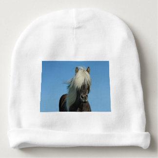 美しいフィヨルドの子馬の馬の種馬 ベビービーニー
