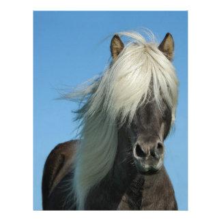 美しいフィヨルドの子馬の馬の種馬 レターヘッド