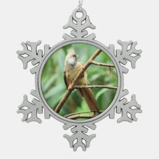美しいブラウン斑入りのMousebird Colius Striatus スノーフレークピューターオーナメント