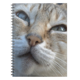 美しいベンガル ノートブック