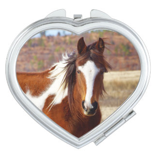美しいペンキの馬のコンパクトの鏡