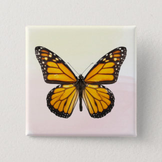美しいマダラチョウのオレンジ黒 5.1CM 正方形バッジ