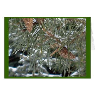 美しいマツクリスマスカードw/Awarenessメッセージ カード