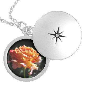 美しい三色のバラは、めっきされたロケットに銀を着せます シルバープレートネックレス