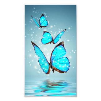 美しい光沢がある青い蝶 フォトプリント