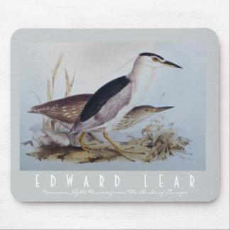 美しい夜鷲- Lear著ヴィンテージの鳥の芸術 マウスパッド