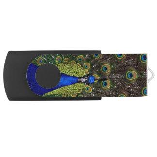美しい孔雀 USBフラッシュドライブ