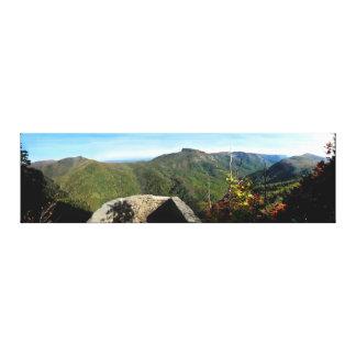美しい峡谷の眺め キャンバスプリント