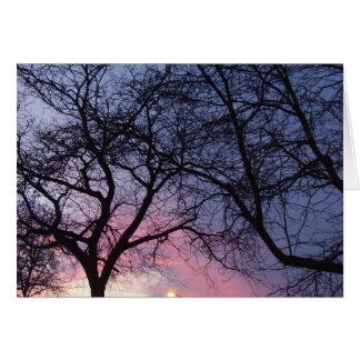 美しい日没1 カード
