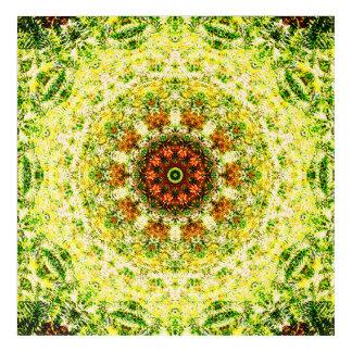 美しい曼荼羅の芸術 アクリルウォールアート
