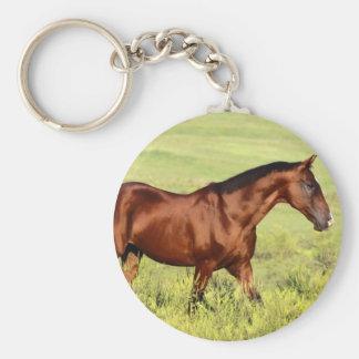 美しい栗毛の馬 キーホルダー