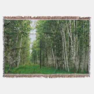 美しい樺の木の森林芸術 スローブランケット