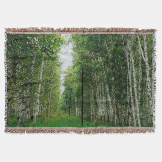美しい樺の木の森林 スローブランケット