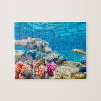 美しい水中魚の世界、watherのシャワーの野良犬 ジグソーパズル