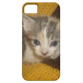 美しい猫 iPhone SE/5/5s ケース