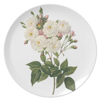 美しい白いバラの花束のプレート プレート