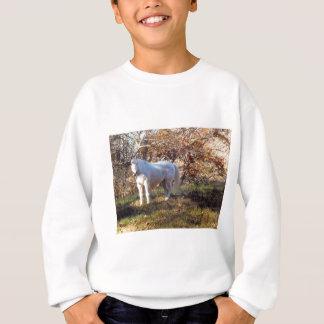 美しい白馬 スウェットシャツ