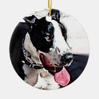 美しい白黒犬 セラミックオーナメント