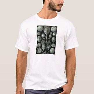 美しい白黒cystoidsの化石の写真 tシャツ